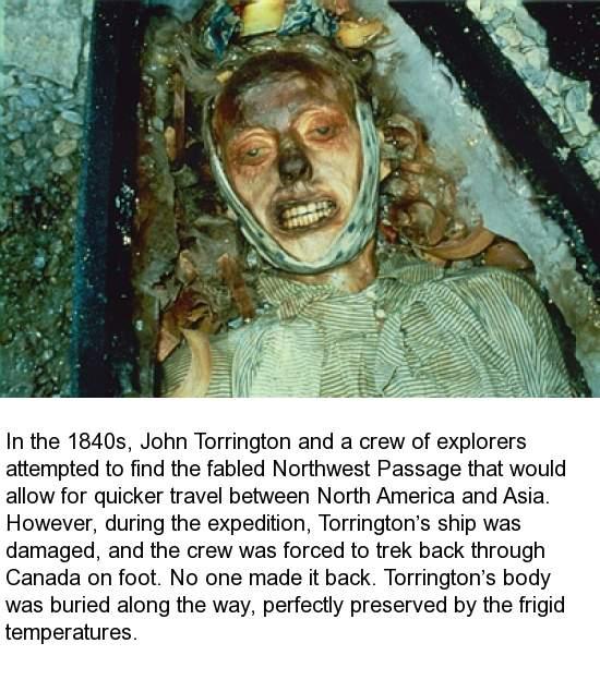 john torrington. 13 john torrington